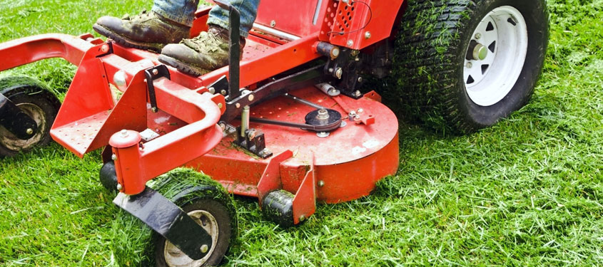 Grass Cutting, Field Topping, Rotavating and Seeding in Durham